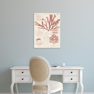 Easy Art Prints Vision Studio's 'Antique Coral Seaweed IV' Premium Canvas Art