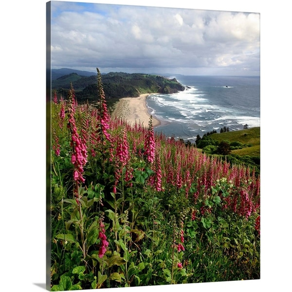"""Foxgloves at Cascade Head, The Nature Conservancy, Tillamook County, Oregon"" Canvas Wall Art"