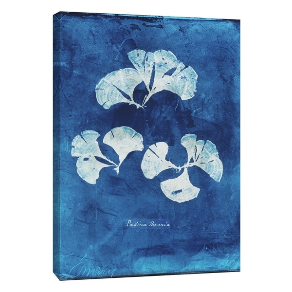 """PTM Images 9-105773 PTM Canvas Collection 10"""" x 8"""" - """"Natural Forms Blue 4"""" Giclee Seaweed Art Print on Canvas"""