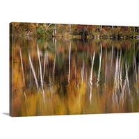 Premium Thick-Wrap Canvas entitled Birch Trees Reflected In Water