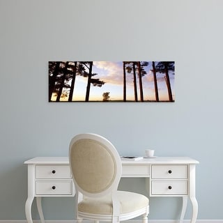 Easy Art Prints Panoramic Images's 'Low angle view of pine trees, Iowa County, Wisconsin, USA' Premium Canvas Art