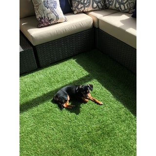 nuLOOM Green Artificial Grass Outdoor Lawn Turf Patio Area Rug