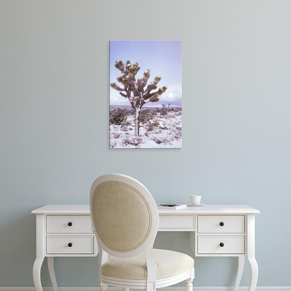 Easy Art Prints Brent Bergherm's 'Joshua Trees Grow In The Foothills Leading To Mt Charleston' Premium Canvas Art