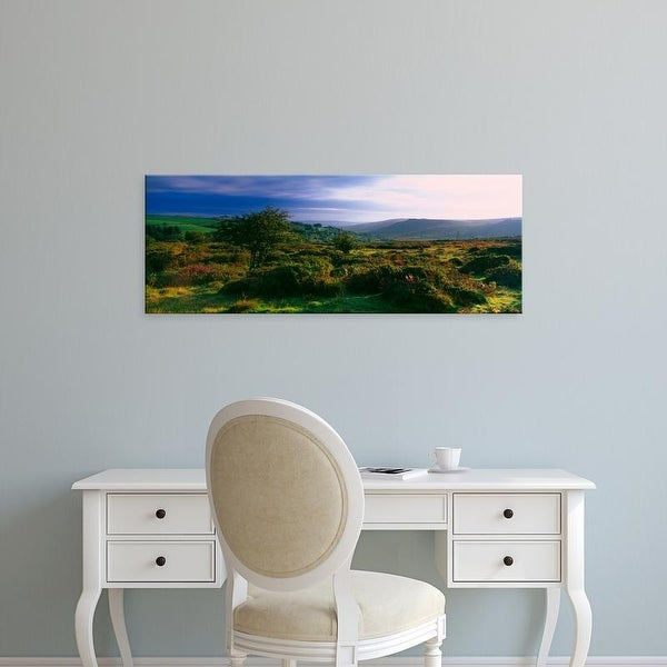 Easy Art Prints Panoramic Images's 'Tree and plants on a landscape, Dartmoor, Devon, England' Premium Canvas Art