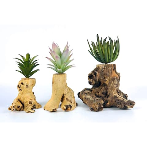 3 Pieces Artificial Succulent Plant with Wood Pot