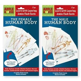 Layering The Human Body - 48 Units
