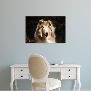 Easy Art Prints Zandria Muench Beraldo's 'Portrait Of A Collie' Premium Canvas Art