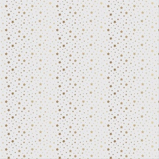 "Diy Shop 4 Specialty Cardstock 12""X12""-Gold Foil Dots On Acetate"