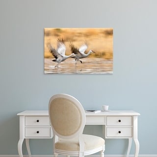 Easy Art Prints Larry Ditto's 'Sandhill Cranes' Premium Canvas Art