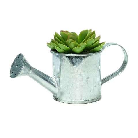 """6"""" Potted Artificial Mini Echeveria Succulent with Watering Can"""