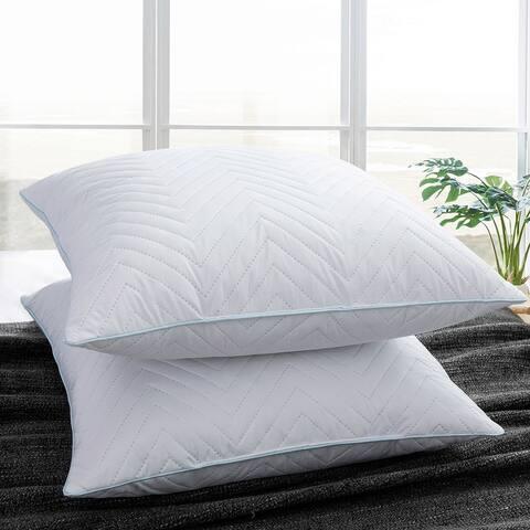 Set of 2 Decorative Throw Pillow Insert