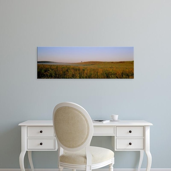 Easy Art Prints Panoramic Images's 'Tall grass on a landscape, Illinois, USA' Premium Canvas Art