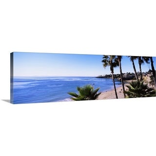 """Palm trees on the beach, Laguna Beach, Orange County, California"" Canvas Wall Art"