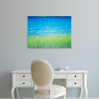 Easy Art Prints Panoramic Images's 'Grass in water' Premium Canvas Art