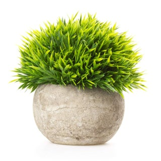 SimLife Mini Plastic Lifelike Artificial Plants Fake Green Grass Flower with Pots For Home Décor (White) (Option: Green)