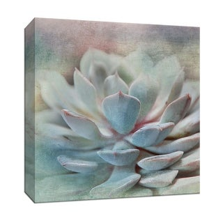 "PTM Images 9-147931  PTM Canvas Collection 12"" x 12"" - ""Pastel Succulent I"" Giclee Flowers Art Print on Canvas"