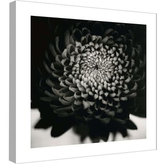 "PTM Images 9-98982  PTM Canvas Collection 12"" x 12"" - ""Succulent Portrait"" Giclee Succulents Art Print on Canvas"