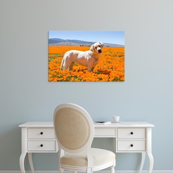 Easy Art Prints Zandria Muench Beraldo's 'Labrador Retriever In Antelope Valley' Premium Canvas Art