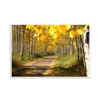 Fall Foliage - Aspen, Colorado  - Capturing America - 24x16 Matte Poster Print Wall Art