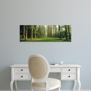 Easy Art Prints Panoramic Images's 'Trees Versailles France' Premium Canvas Art