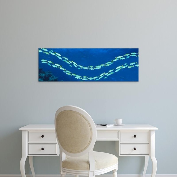 Easy Art Prints Panoramic Images's 'School of fish Great Barrier Reef Australia' Premium Canvas Art