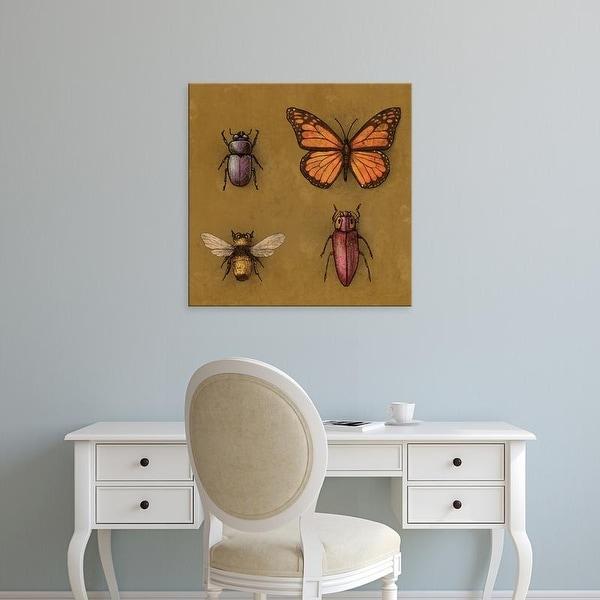 Easy Art Prints Terry Fan's 'B Is For' Premium Canvas Art