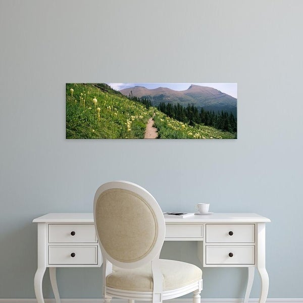 Easy Art Prints Panoramic Images's 'Hiking trail with Beargrass at US Glacier National Park, Montana' Canvas Art