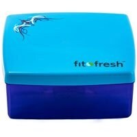 Fit & Fresh Kids' Lunch Sandwich POD with Removable Ice Pack