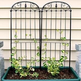 Sunnydaze 32-Inch Durable Metal Wire Traditional Garden Trellis - Set of 2