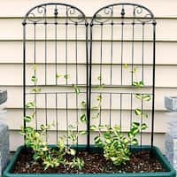 Sunnydaze Traditional Garden Trellis for Potted or Outdoor Plants - Set of 2