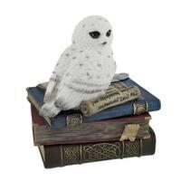 Wise Snow Owl Resting on Scholar`s Books Trinket Box