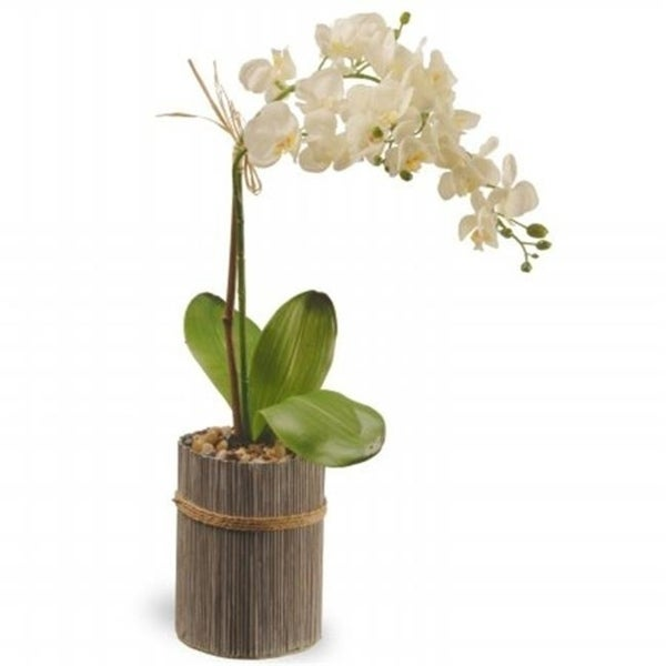 National Tree GAPF30-20W 20 in. Potted Orchid - White
