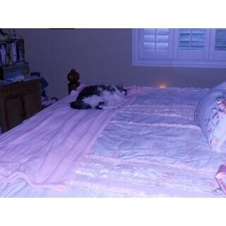 Madison Park Harmony Coral Cotton Percale Comforter Set