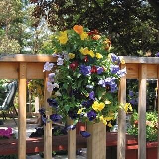 Mixed Double Petunia Flower Garden with Vertical Growing Bag