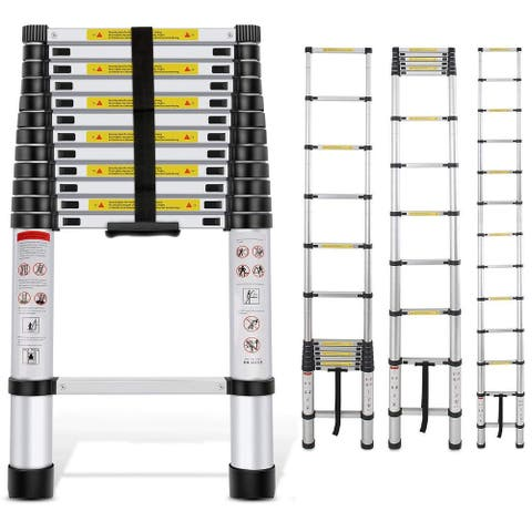12.5FT Extension 12-Step Aluminum Stretchable Ladder