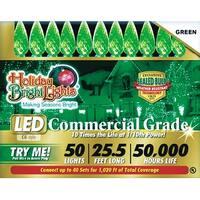 Holiday Bright Light LEDBX-C650-GR6 Commercial LED Light Set, Green
