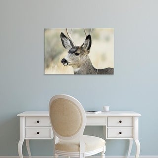 Easy Art Prints Gerry Reynolds's 'Buck' Premium Canvas Art
