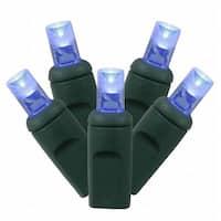 100Lt LED Blue/GW WA Ec Set 1Pc 6''x50'L