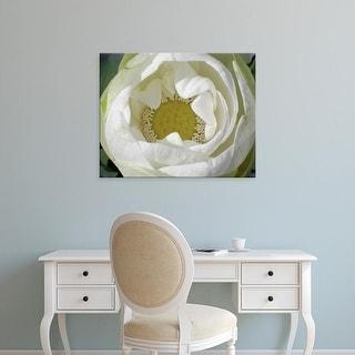 Easy Art Prints Jim Christensen's 'Delicate Lotus I' Premium Canvas Art