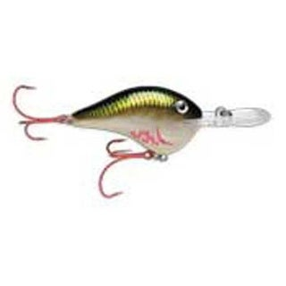 Rapala DT 20' Series Bleeding Olive Shiner