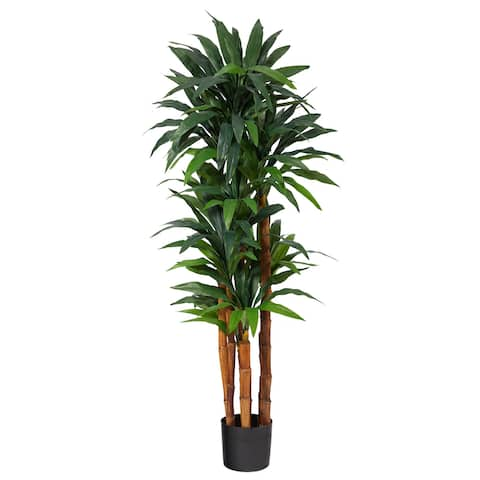 """5.5' Dracaena Artificial Tree with Natural Cane Trunk - 6"""""""