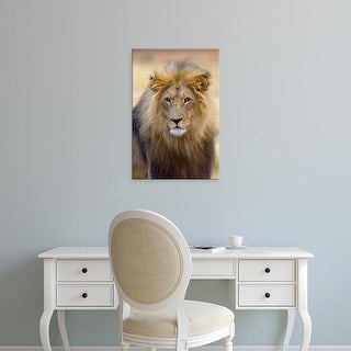 Easy Art Prints Joe Restuccia III's 'African Male Lion' Premium Canvas Art