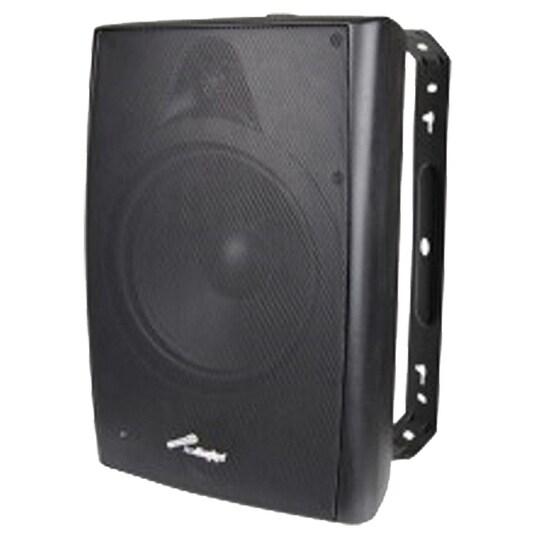 Audiopipe 8in Indoor/Outdoor Speakers