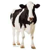 Advanced Graphics 709 Cow Life-Size Cardboard Stand-Up