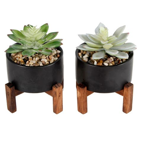 Artificial Plant SET OF 2 SUCCULENTS IN CERAMIC POT ON WOOD STAND - ONE-SIZE