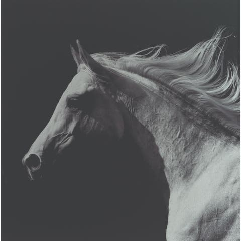 """Black and White Horse Printed Square Wall Art Decor 18"""" x 18"""" - N/A"""