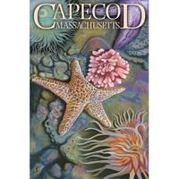 Cape Cod, MA - Tidepool - LP Artwork (Cotton/Polyester Chef's Apron)