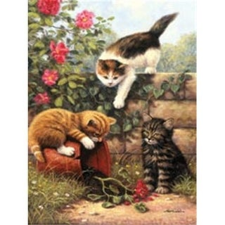 422112 Junior Small Paint By Number Kit 8.75 in. X 11.75 in. -Kitten