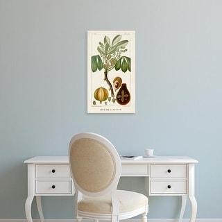 Easy Art Prints Turpin's 'Turpin Exotic Palms VIII' Premium Canvas Art