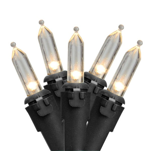 """Set of 50 Warm White LED Mini Christmas Lights 4"""" Spacing - Black Wire - CLEAR"""